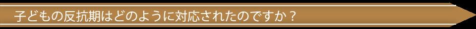 ttl011